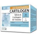 Cartilogen® CARTEIRAS
